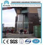 Grande projeto do tanque de peixes do aquário dos peixes
