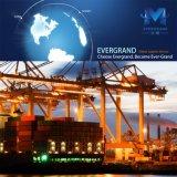 O transporte de frete marítimo global da China