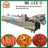 Processhing vegetais Blanching Manchine Cenouras Fornecedor Blancher Correia de vapor contínuo