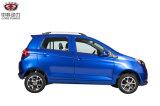 リチウム電池の経済的な電気自動車