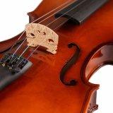 Les fournisseurs de violons de Basswood d'élève en Chine 1/8-4/4