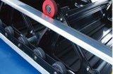 Trasportatore del passeggero della scala mobile del passeggero da 30 gradi con buona qualità & il prezzo competitivo