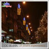 Het Licht van de Decoratie van de openlucht Commerciële LEIDENE van de Officiële feestdag Straat van Kerstmis