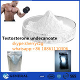 Testosterona Undecanoate do CAS 5949-44-0 dos pós do Bodybuilding da pureza de 99%