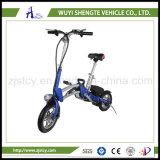12inch motorino elettrico poco costoso 350W 36V