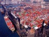 O transporte marítimo de barata a via Apapa/Tincan/Lagos/Onne, Nigéria