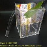 5 orifícios Acrylic Floreira com Insira fotos