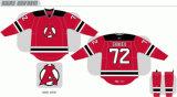 Customized Homens Mulheres Crianças Liga de Hóquei Americana Albany Devils 2010-2017 Estrada Inicial Hóquei no Gelo Jersey