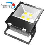 세륨, RoHS 옥외 이음쇠 100W LED 플러드 빛