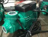 Nuovo tipo pompa elettrica 0.37kw/0.5HP delle acque pulite di Qb60