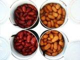 Заготовленных красная фасоль с высоким качеством