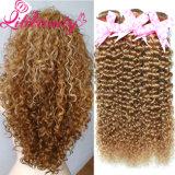 Hot Selling Lili Beauty Kinky Curly Brazilian Virgin Hair