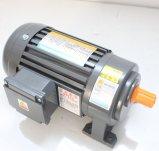 Motor de engrenagem CA de redução de engrenagem vertical horizontal trifásica / trifásica