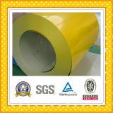 PPGI Steel Sheet in Coil