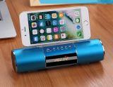 Bluetoothの移動式実行中のスピーカー、表示を持つBluetoothの携帯用無線スピーカー