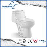 Um toalete cerâmico branco nivelado duplo da parte (ACT7299)