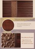 Мебели спальни шкафа доски частицы (zy-049)