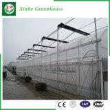 Serra commerciale della plastica del giardino della Multi-Portata