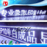 Singel blanco P10 Módulo LED panel LED para firmar