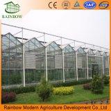 ガラスマルチスパンの農業の温室のタイプ安い温室