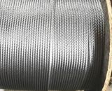Cordage en acier non galvanisé et en acier galvanisé (6 * 37 + iwrc)