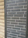 Panneau matériel décoratif de mur de construction