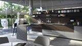 白い無光沢のLacaquerの木の台所食器棚のキャビネット