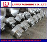ステンレス製の鍛造材の合金鋼鉄空は管ヘッドApiq1を造った