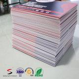 Strato di plastica ondulato dei pp colorato alta qualità per la pubblicità della scheda