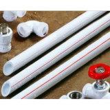 냉수를 위한 백색 플라스틱 폴리프로필렌 PPR 관