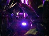 LED 정원 램프를 적합한 15W IP65 조경 빛