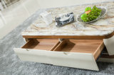 Moderne TV Stand Furniture in Woonkamer (1230)