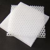 Легкий вес жесткость водонепроницаемый пластиковый Honeycomb