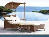 Напольный стул салона Chasie, стул софы пляжа Lounger Sun (JJCL-20)