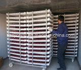 Industrielle Nahrungsmittelfrucht-Frost-Trockner-Maschine/Vakuumfrost-trocknende Maschine
