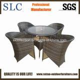 Плетеную мебель садовая мебель / 5 Кусок стол и стулья (SC-B6519)