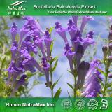 100% натуральные Scutellaria Baicalin Extract (95%)