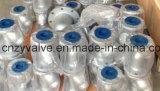 "API/DIN/JIS A216 Stahl Form Class150 Wcb 5 "" Dn125 Y Grobfilter"