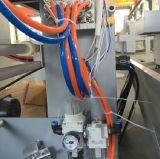 Machine automatique de module d'enveloppe de rétrécissement de la chaleur de bouteille d'animal familier