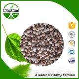 La importación de fertilizantes NPK 16-16-16=Te para la planta