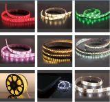 Muestra de la luz de tiras de la iluminación LED de la publicidad comercial
