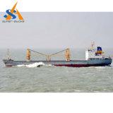 buque de carga del carguero de graneles 54000dwt