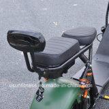 1500W脂肪質の車輪のタイヤUsun Harley Citycoco 2 Wheel Electric セリウムが付いているスクーター