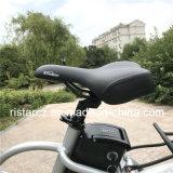 E 자전거 Rseb-507를 접히는 500W 20inch