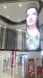 P5 Curve Circular Indoor LED Display for Advertisement and Shopping Badly