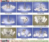 Accesorios de iluminación decorativa: 163-171