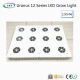 Мощный светодиодный индикатор для роста Блум и фрукты (Уран 12 серии)