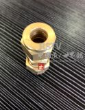 Messingscheibe-Rohranschluss-einzelner männlicher Verbindungsstück-Verbinder