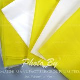Polyester Printing Screen Fabric/Bolting Cloth/Screen Printing Mesh