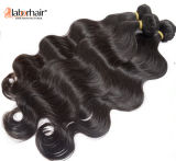 Extensões 100% brasileiras do cabelo humano do Virgin